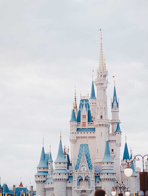 Walt Disney World castle family vacation