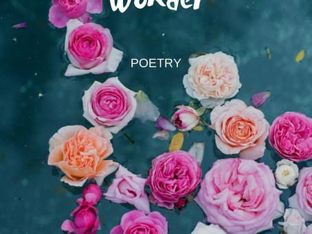 Roses In Land Of Wonder