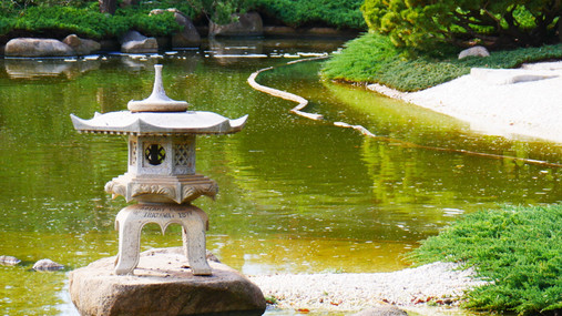 Toro at Cowra Japanese Garden.JPG