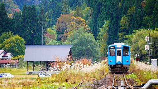 Autumn Colour Japan