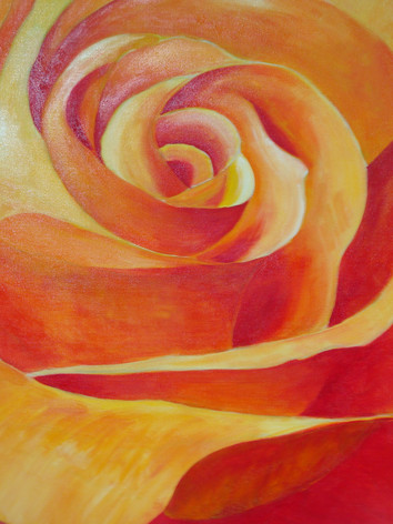 Meine Lieblingsblume - die Rose