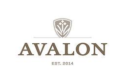 Primary_Avalon_Color.jpg
