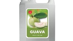 REDSUN GUAVA SYRUP (4/CS)