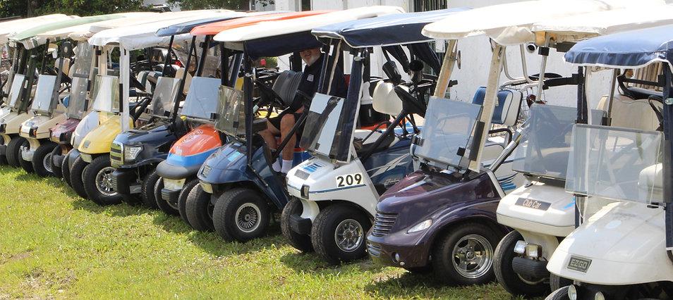 lineup of carts.jpg