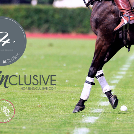 - Horse Inclusive, un service de conciergerie au DIPC -