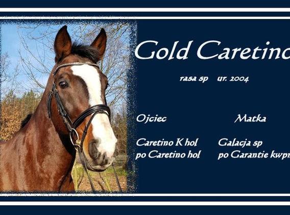 Gold Caretino
