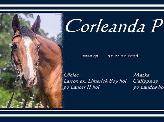 Corleanda P