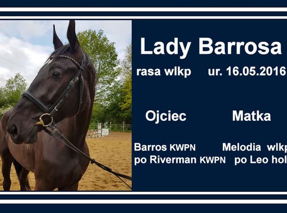 Lady Barrosa