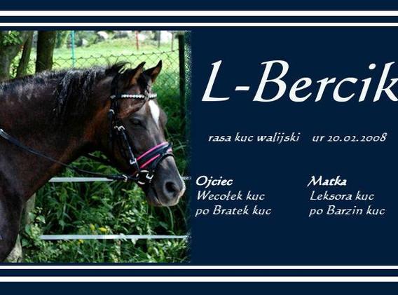 L-Bercik