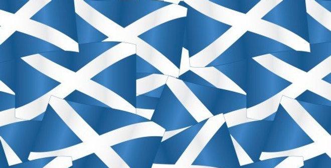 Scottish Flag Bar Cover