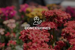 CONCESIONES copy