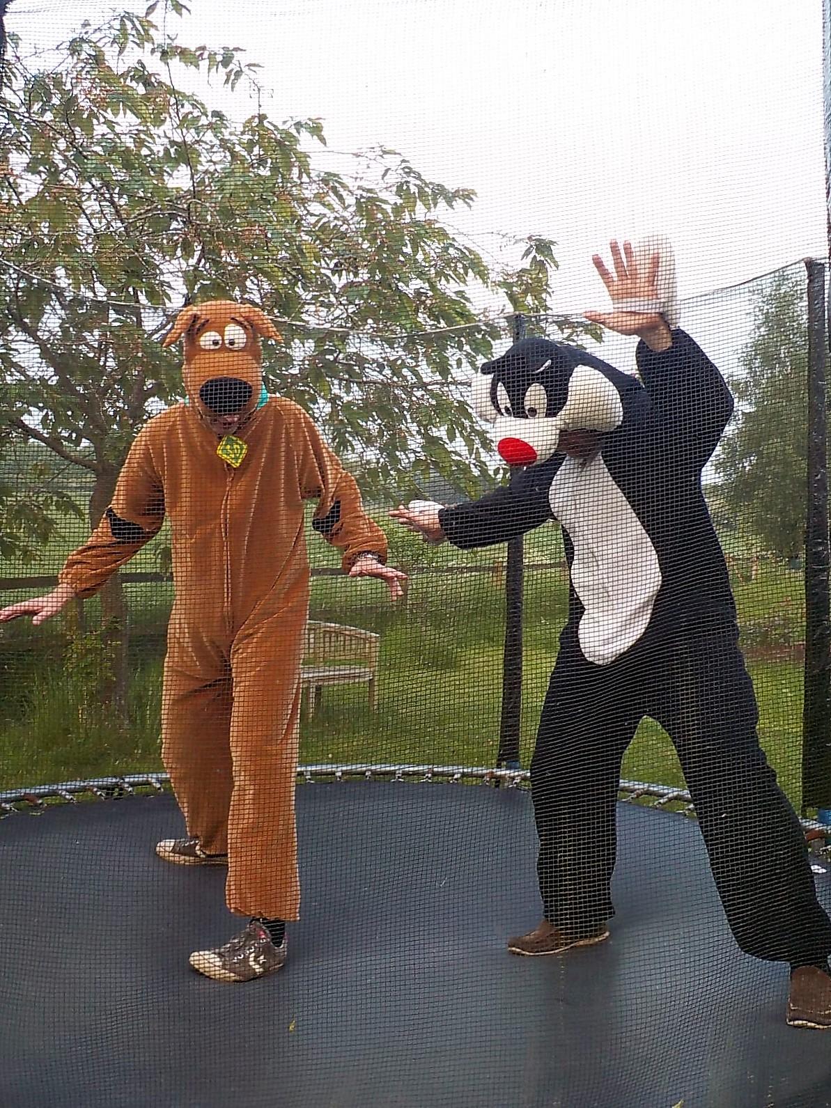 Sylvester & Scooby Doo