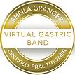 virtual gastric band.png
