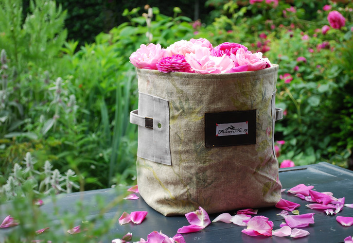 Collecting rose petals is a must this time of year!