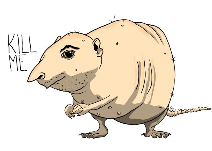 Rat Person