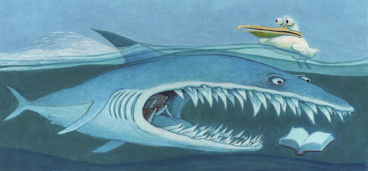 SharkNoBorder.jpg