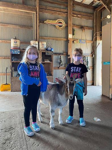 kids goat mask.jpg