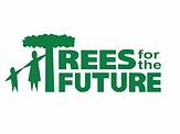 TFF Long Logo.png
