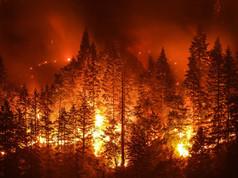 CA Fire.jpg