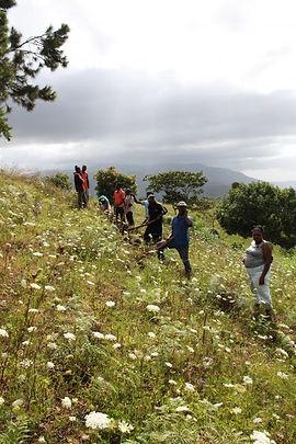 Haiti Site 7.jpg
