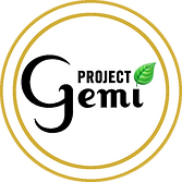 ProjectGemi Logo 600px_white bkground bl