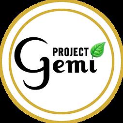 ProjectGemi Logo 600px_white bkground bl