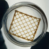 3D Bioprinting wih type I collagen using Lifeink 200