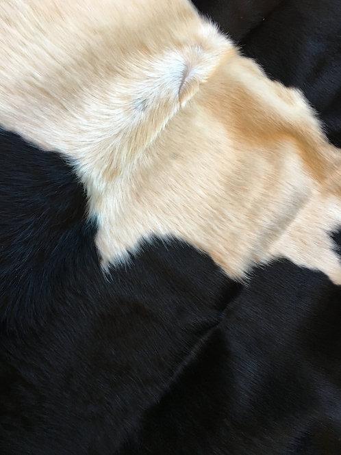 Cow Hide Rug special order