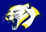 FIS Cougar.png