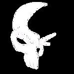 純色logo(白)_edited.png