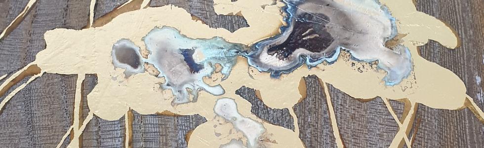 méduses détails