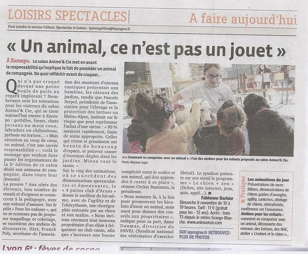 Teena&Co, Educaion Canine Loire, Prévention à la morsure