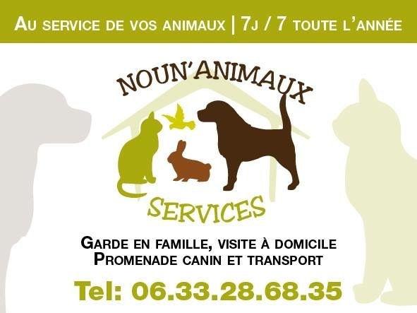 Noun Animaux Services, Teena&Co, Education Canine Loire, Médiation Animale Loire