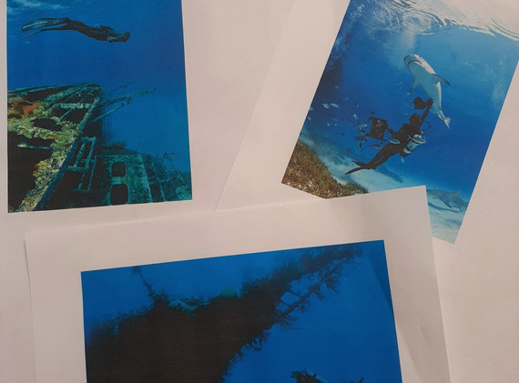 Under the Sea Inspiration