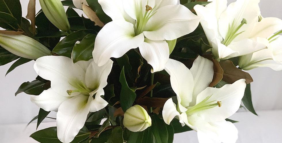 Oriental Lilies