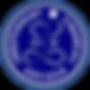 Independent fincial adviser
