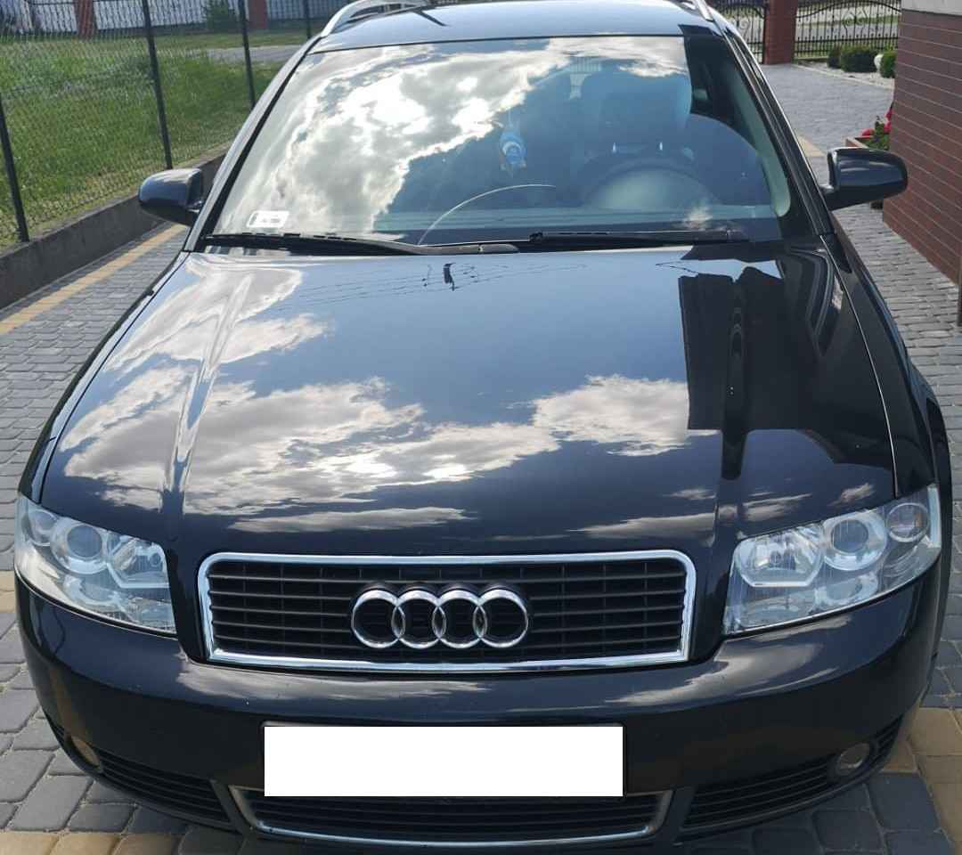 Audi 1.9tdi 101Hp -> 311.8Nm/2316Rpm 137.2Hp/3967Rpm