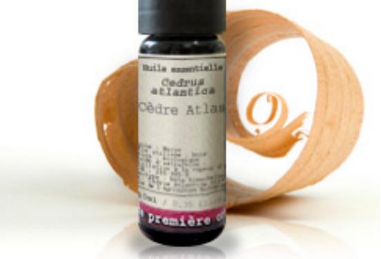 Aceite esencial Cedro del Atlas (Cedrus atlantica)