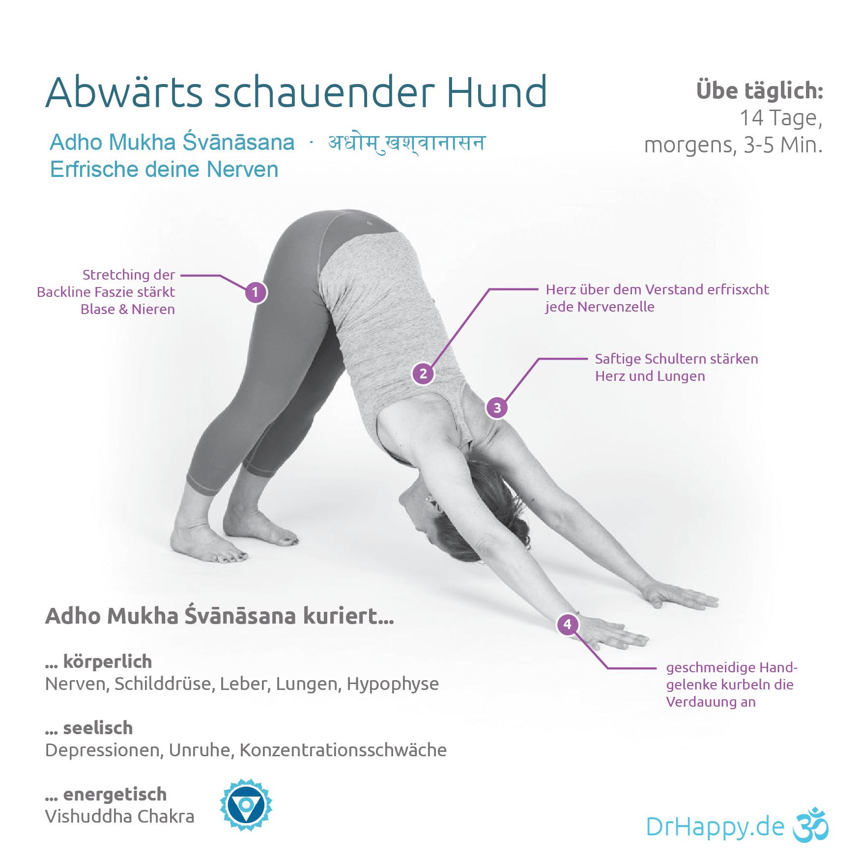 Yogauebung-Abwaertsschauender-Hund-Adho-Mukha-Svanasana