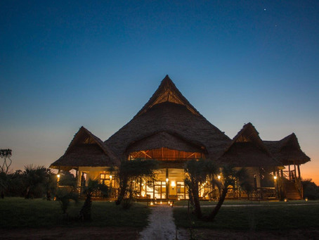 Love is in the air at Villa Nyangumi