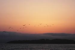 Sunset at San Simeon