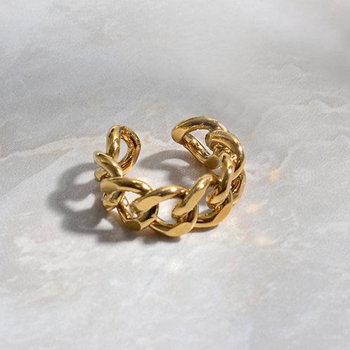 Adjustable Chain Ring