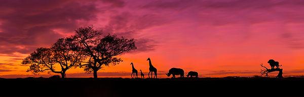 Amazing sunset and sunrise.Panorama silh
