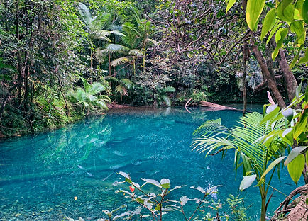 Brilliant blue water in the Blue Hole Po