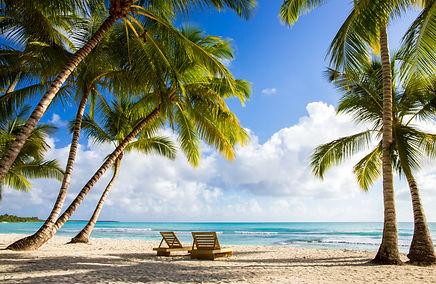 Beautiful caribbean beach on Saona islan