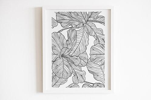 Line Drawn Leaves Print