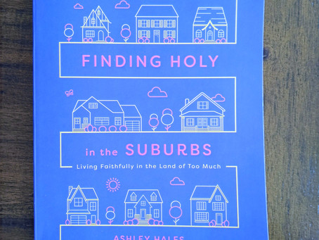 Book Review: Finding Holy in the Suburbs