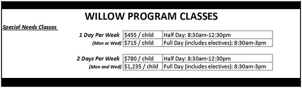 Willow Academy Fees.JPG
