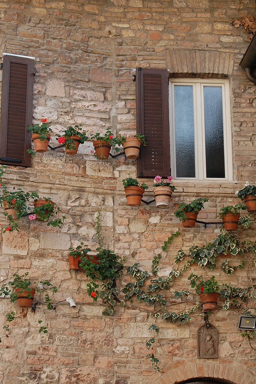 Flower Pots Wall: Assisi, Italy