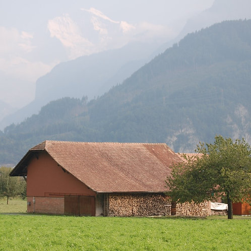 Swiss Barn and Mountains